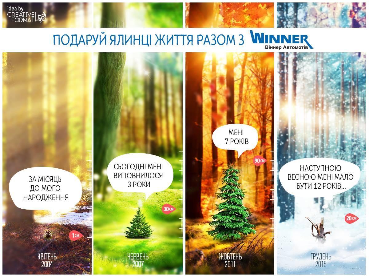 Даруємо ялинку за лайки! - офіційний представник Winner в Україні